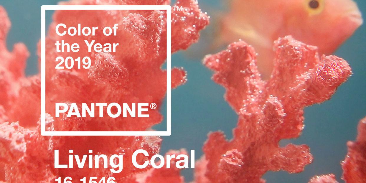 Living Coral: Como usar a cor eleita pela Pantone para 2019